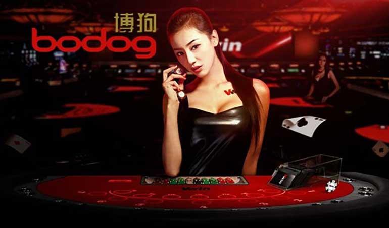 China shore slot machine